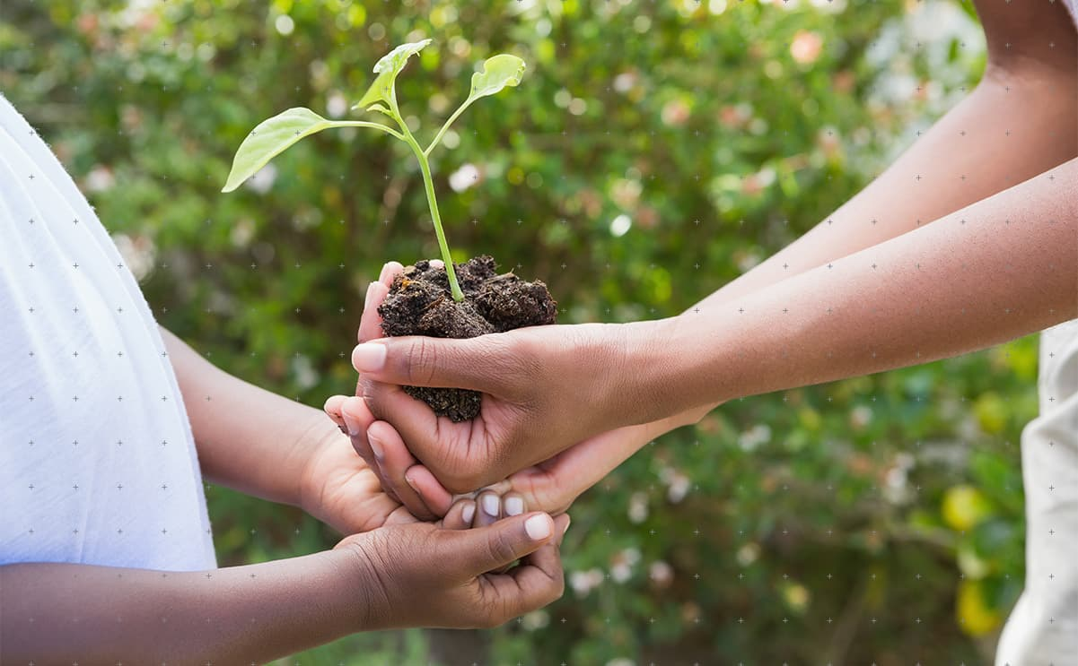 How to Adopt Sustainable Business Practices